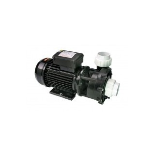 3 Hp 1Speed pumpe LX Whirpool LP300