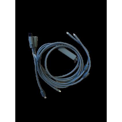 Sloan ledlys